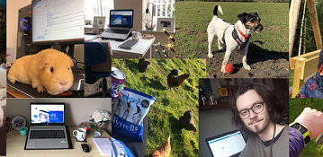 Our Team's Tips for Working from Home!